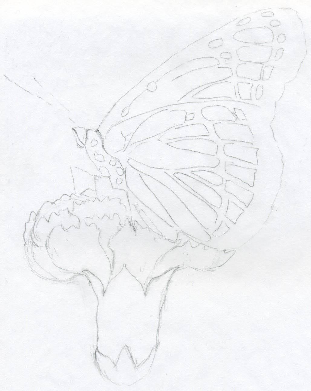 1028x1292 Pencil Sketch Girl Barbie Pori With Flower Barbie Image Pencil