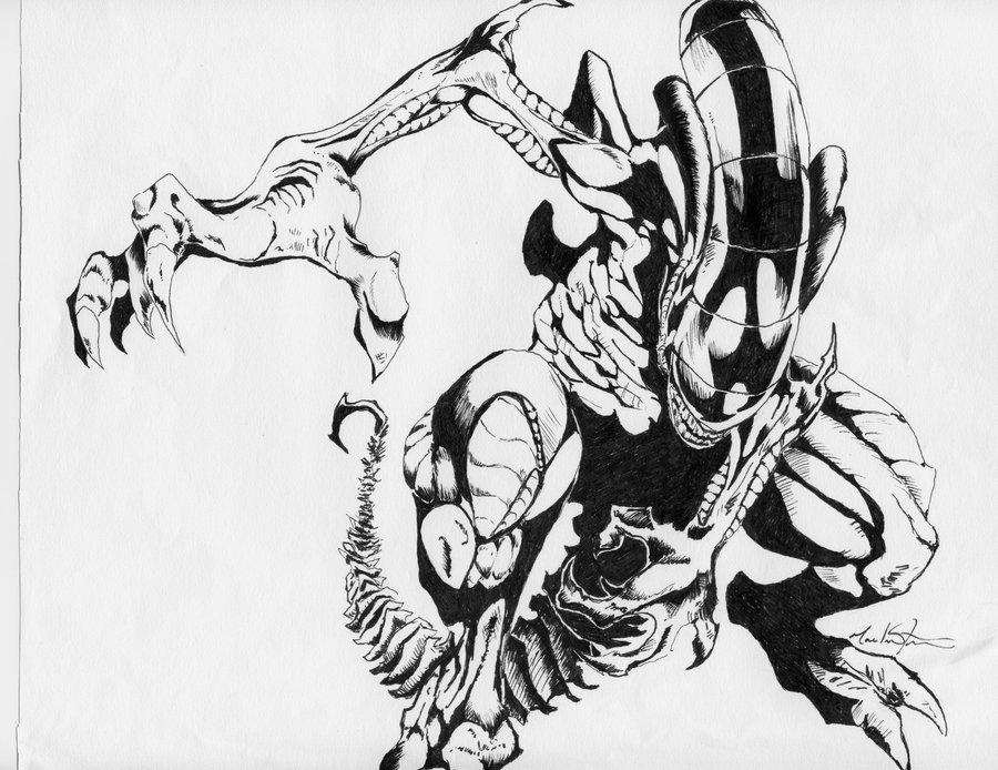 900x694 Aliens Sketch In Micron Pen By Liquiddragondesign