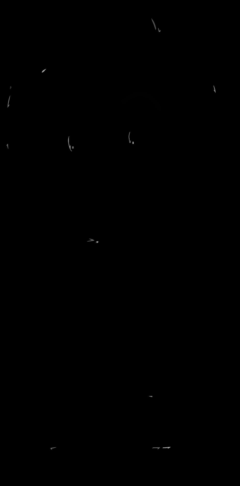 978x1976 Clipart
