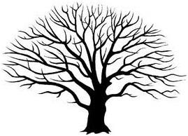 269x194 2012 Live Oak And Tree Program @ Mychna