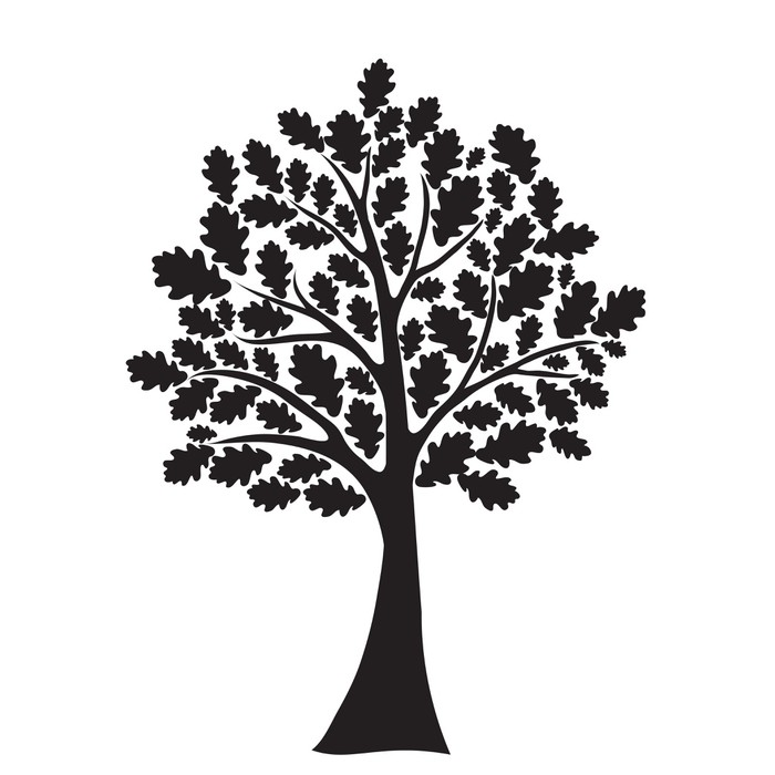 700x700 Black Oak Tree, Stylized, Vector For Design Wall Mural Pixers