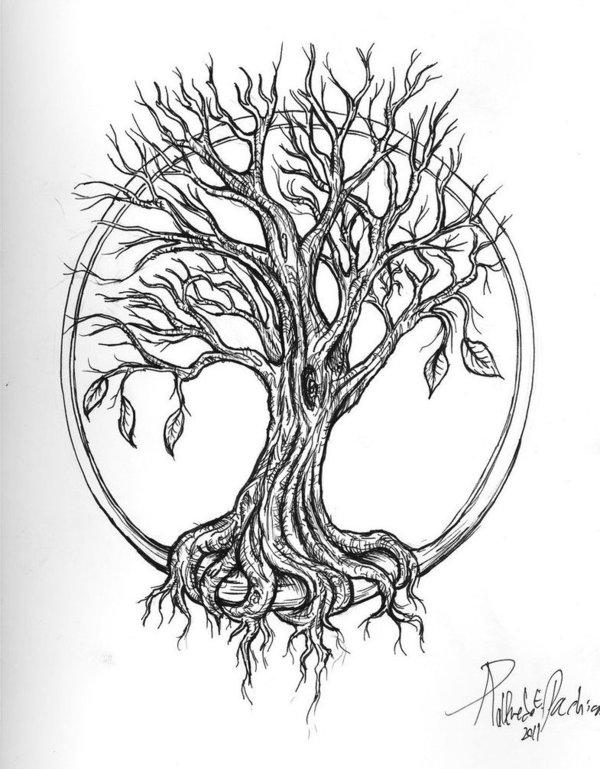 600x769 Latest Oak Tree Tattoos Collection