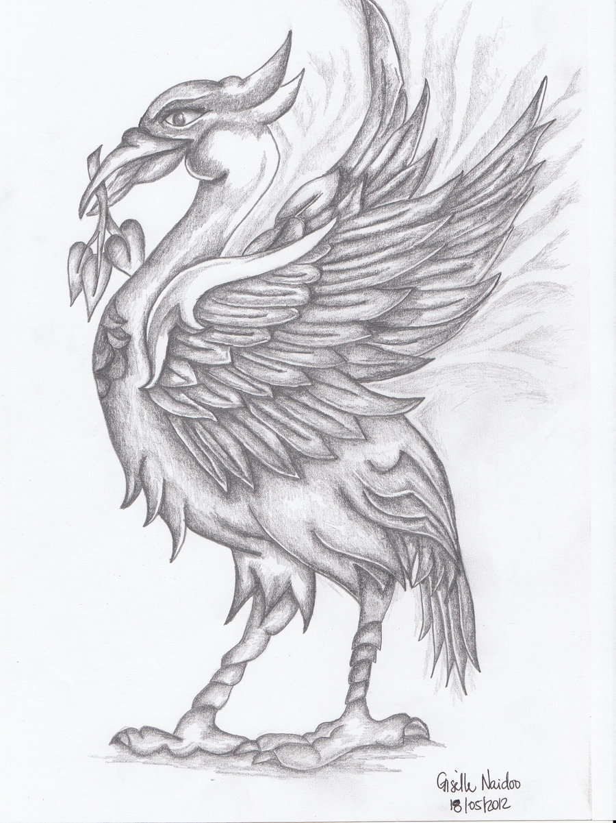 900x1201 Liverbird By Chizzel