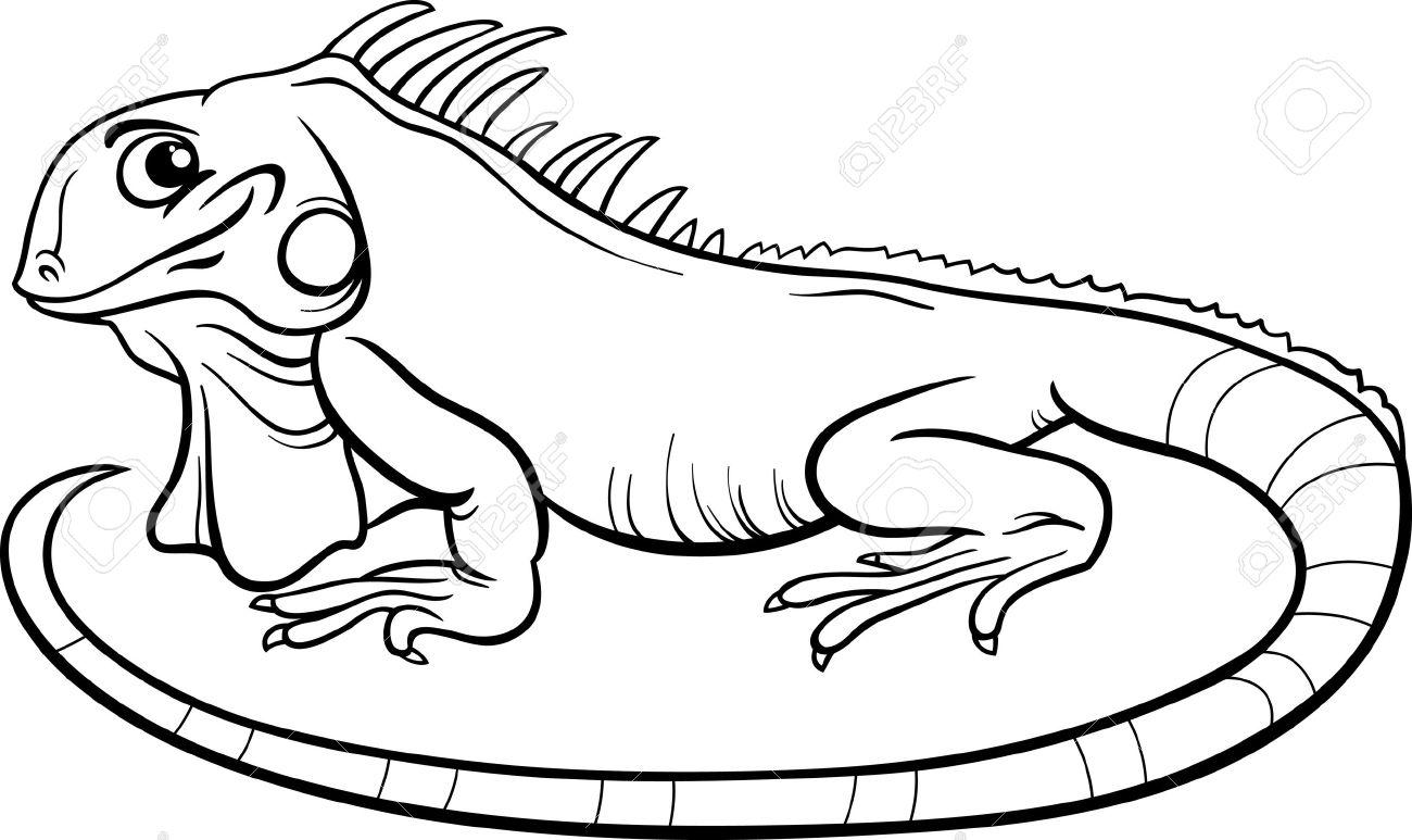 1300x773 Black And White Cartoon Illustration Of Funny Iguana Lizard