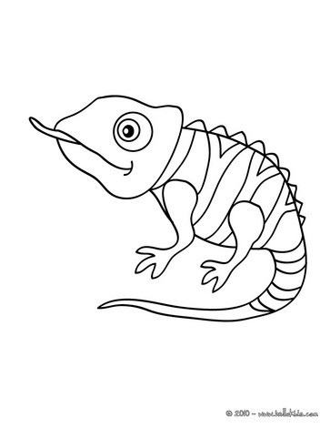 363x470 Reptile Coloring Pages