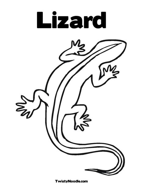 468x605 Lizard Lizards Lizards