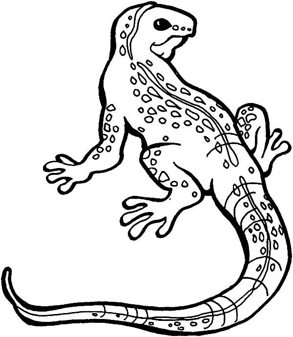 Dragon Chinese Drawing At Getdrawings Com