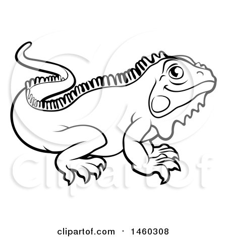 450x470 Clipart Of A Black And White Iguana Lizard