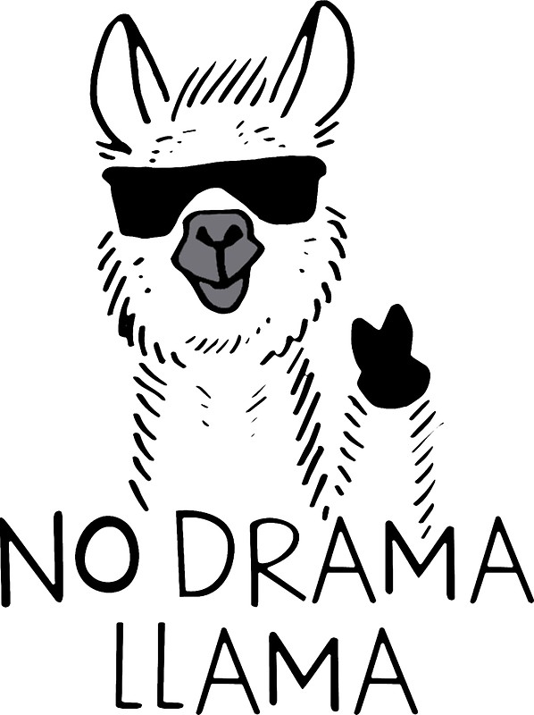 598x800 No Drama Llama Meme Face Stickers By Jewellmcchesney Redbubble