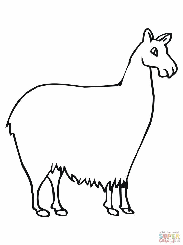 llama llama coloring pages - llama line drawing at free for personal
