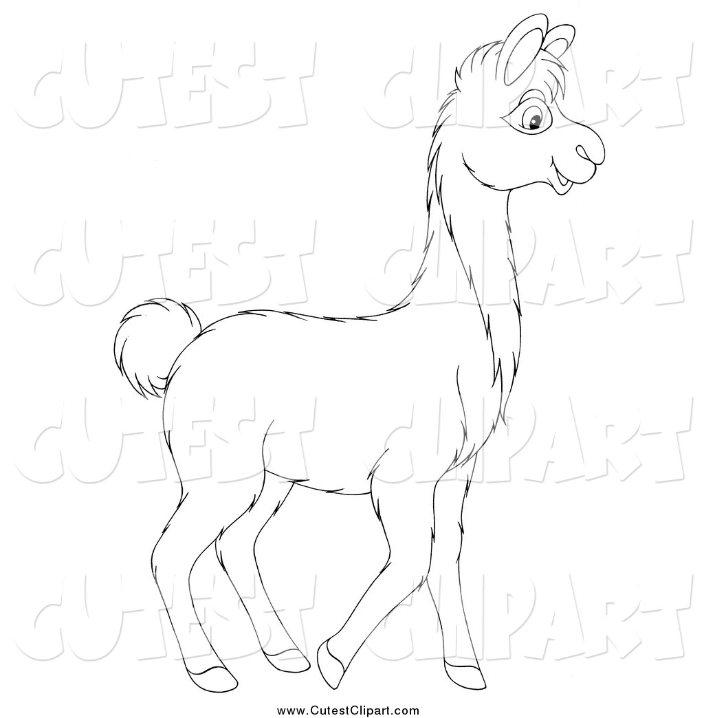 1024x1044 Vector Clip Art Of A Black And White Walking Llama By Alex Bannykh