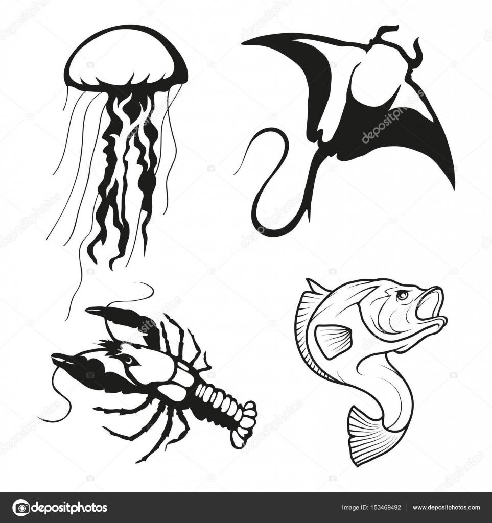 963x1024 Jellyfish, Manta Ray, Lobster And Fish Logos Stock Vector