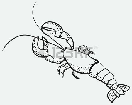 450x357 Sketch Of Big Appetizing Lobster Royalty Free Cliparts, Vectors