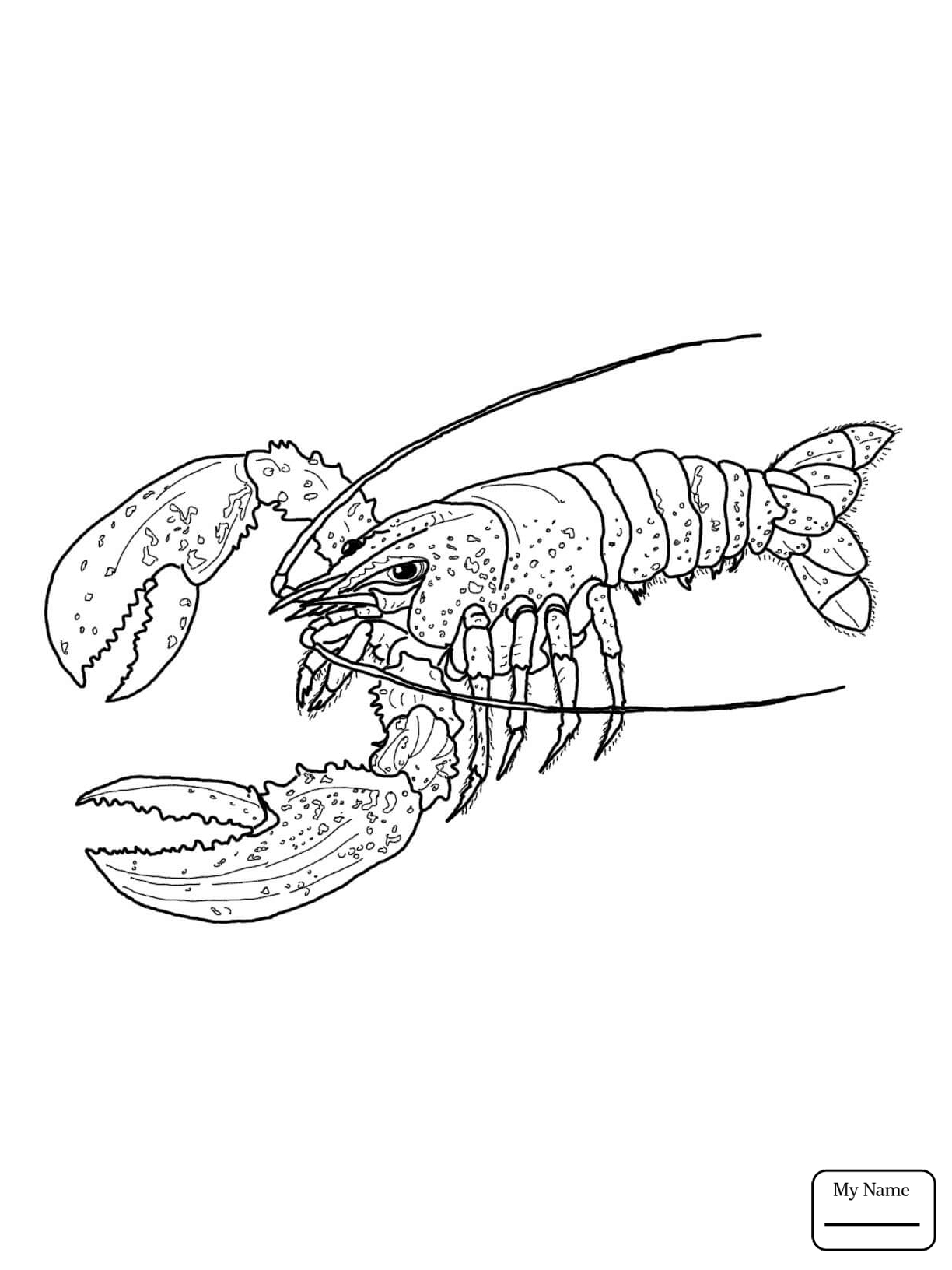1224x1632 Coloring Pages For Kids Lobster Crustacean Lobsters