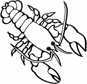 300x288 Lobster Coloring Page For Kids 2 Graphics, Appliques Amp Clip Art
