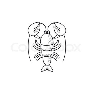 320x320 Lobster Sketch Icon For Web, Mobile And Infographics. Hand Drawn
