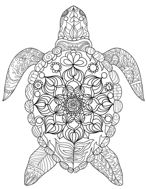 564x729 Pin By Barbara On Coloring Turtle, Penguin Penguins
