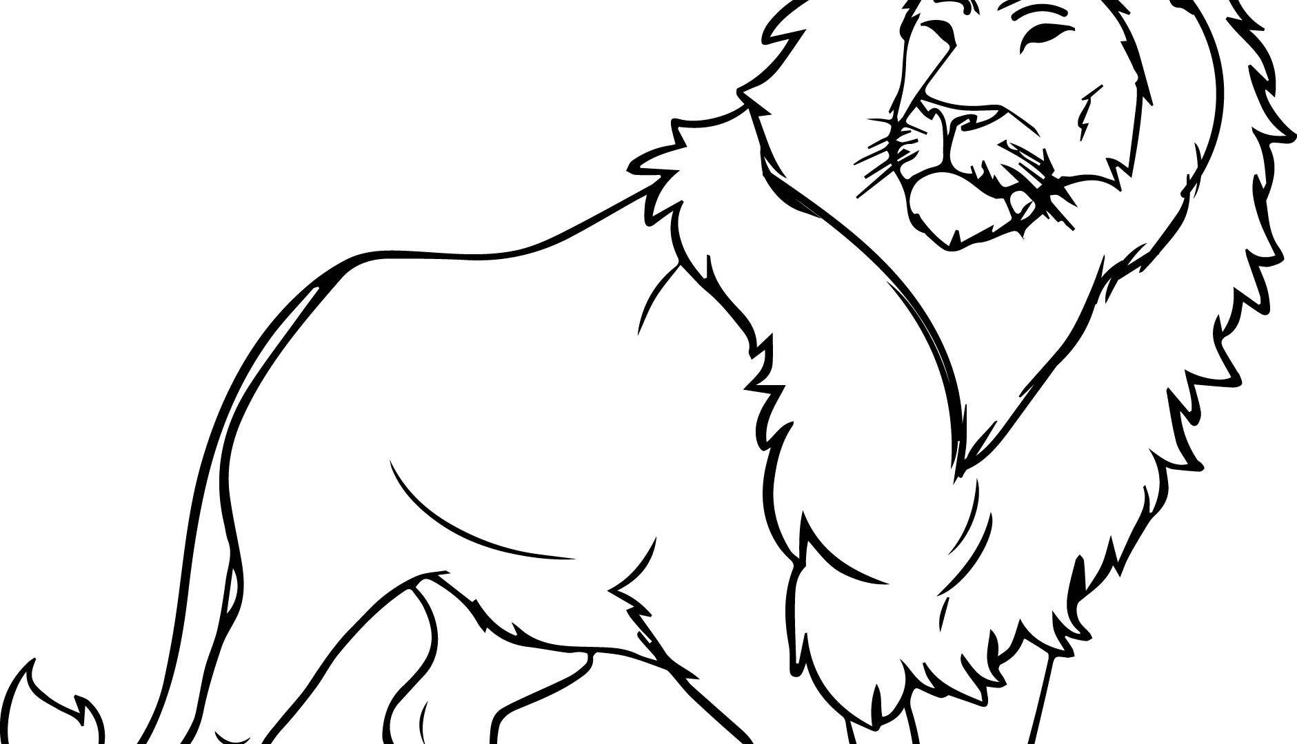 Loin Drawing at GetDrawings.com | Free for personal use Loin Drawing ...