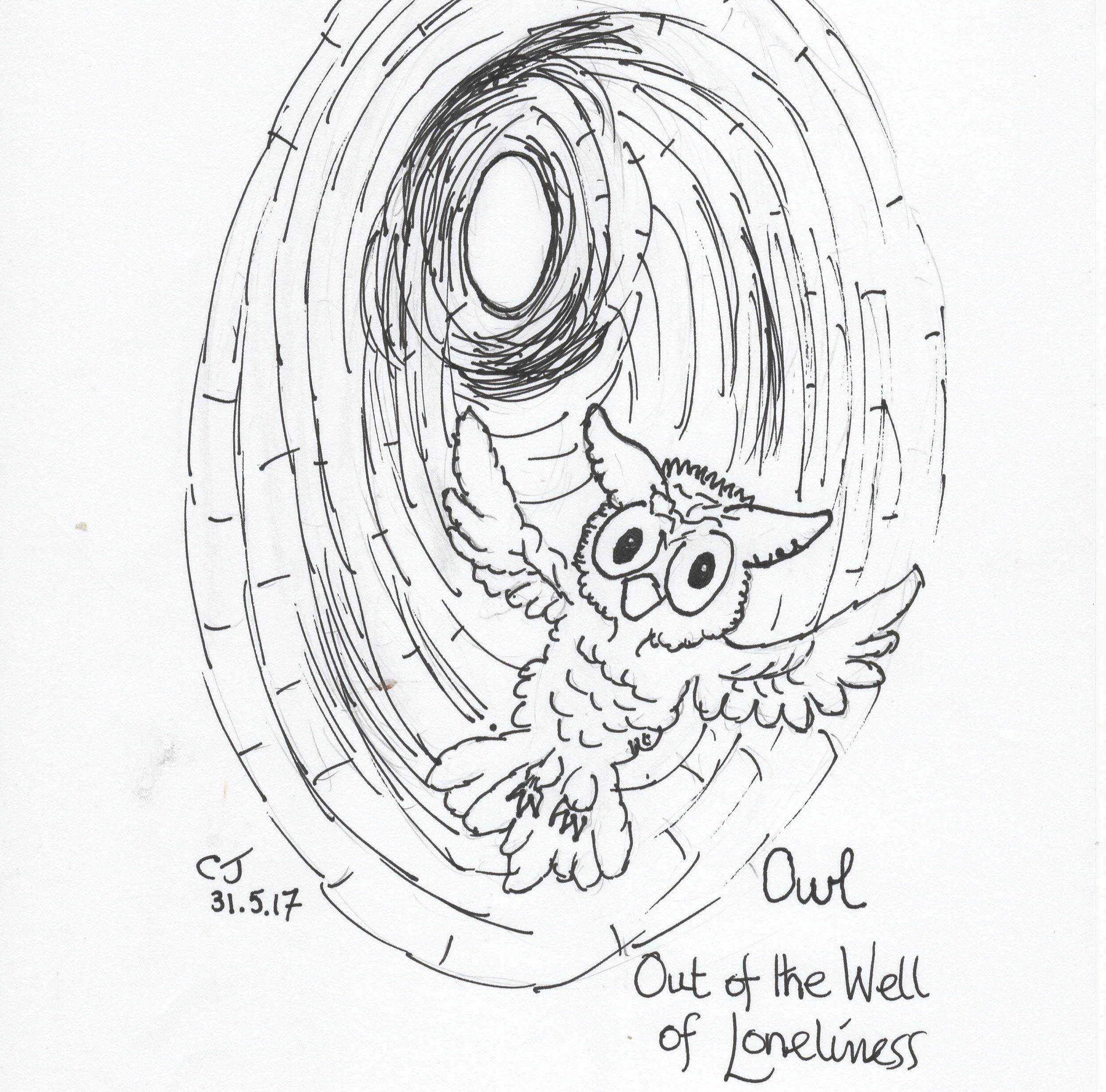 2494x2463 Owl