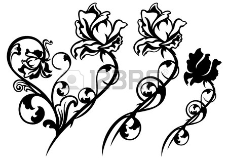 450x314 Long Stem Roses Stock Photos. Royalty Free Business Images