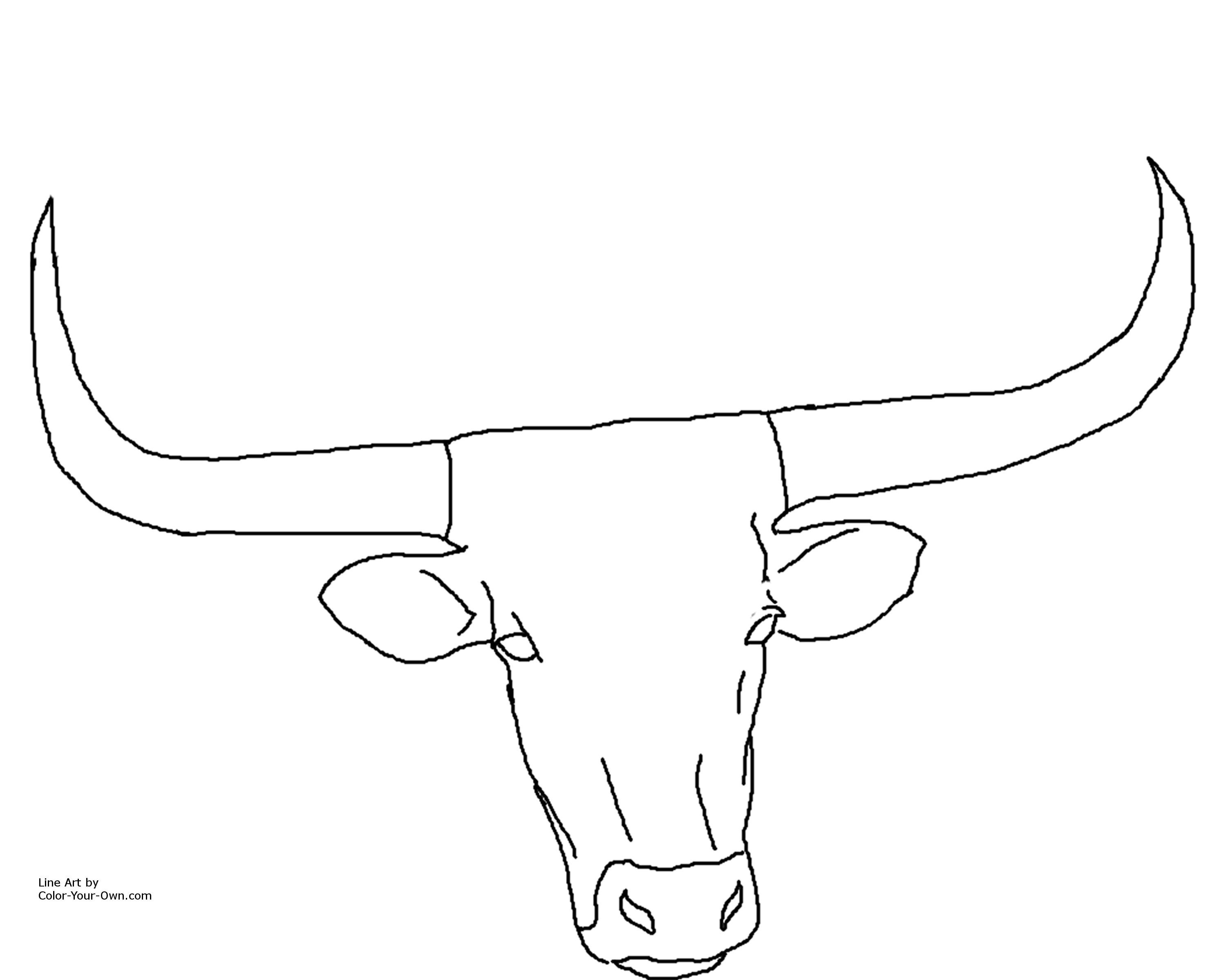 Longhorn Bull Drawing at GetDrawings.com | Free for personal use ...