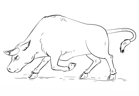 480x333 Cartoon Bull Coloring Page