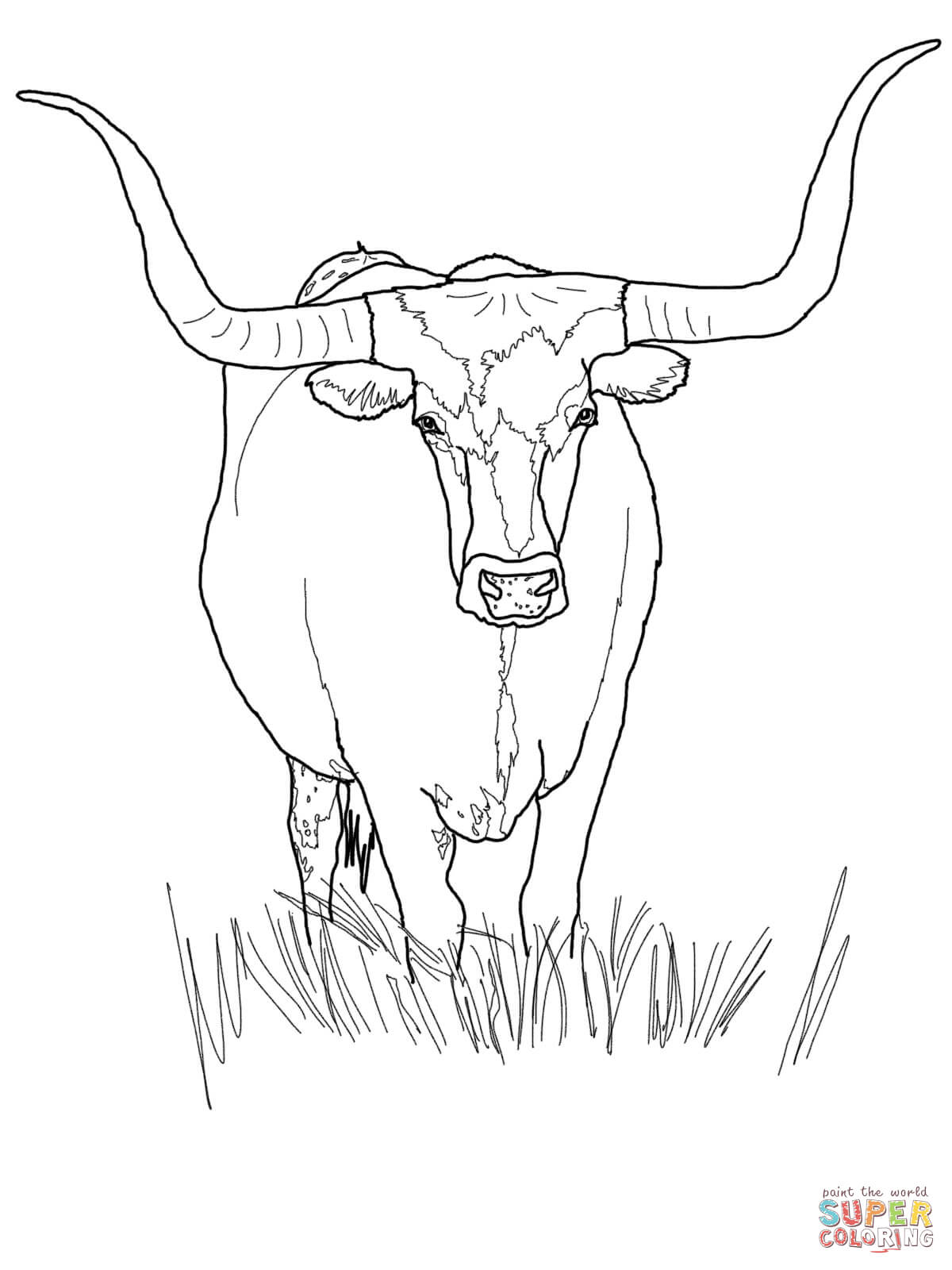 1200x1600 Texas Longhorn Cattle Coloring Page Free Printable Coloring Pages