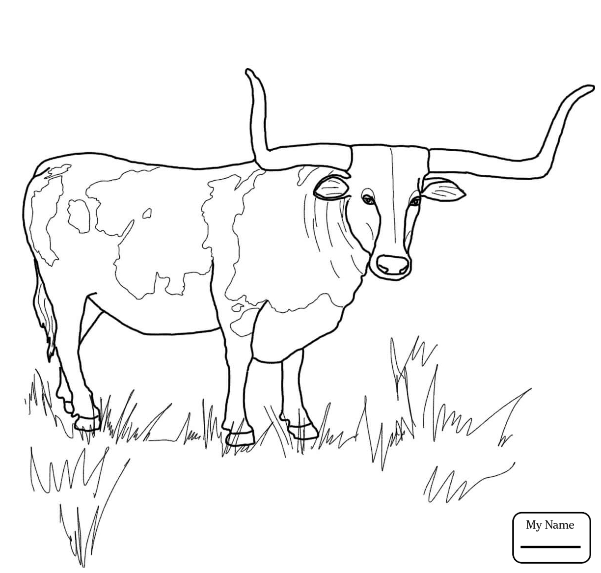 1224x1167 Coloring Pages For Kids Mammals Texas Longhorn Cattle Longhorn