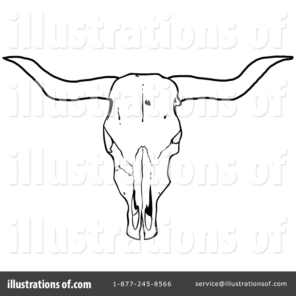 Longhorn Cattle Drawing at GetDrawings | Free download