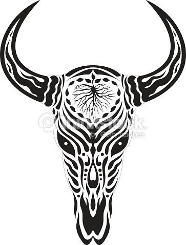 Longhorn Skull Drawing At Getdrawings Com Free For Personal Use