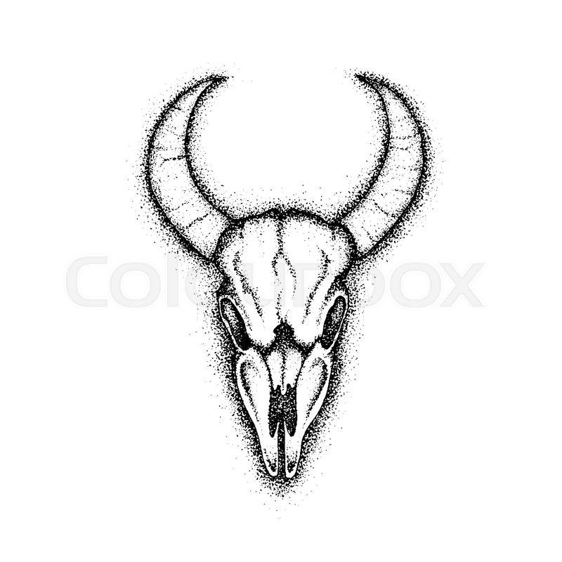 800x800 Dotwork Cow Skull. Vector Illustration Of Boho Style T Shirt