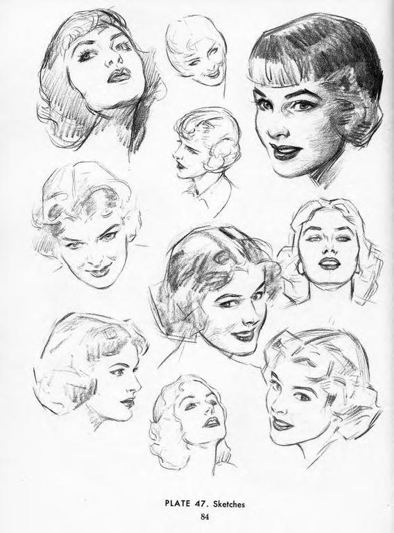 The Best Free Loomis Drawing Images  Download From 139