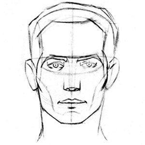 300x300 How To Draw The Head Front View Proko