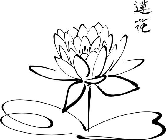 564x476 This Lotus Drawing Is The Exact Shape I Want For My Tattoo