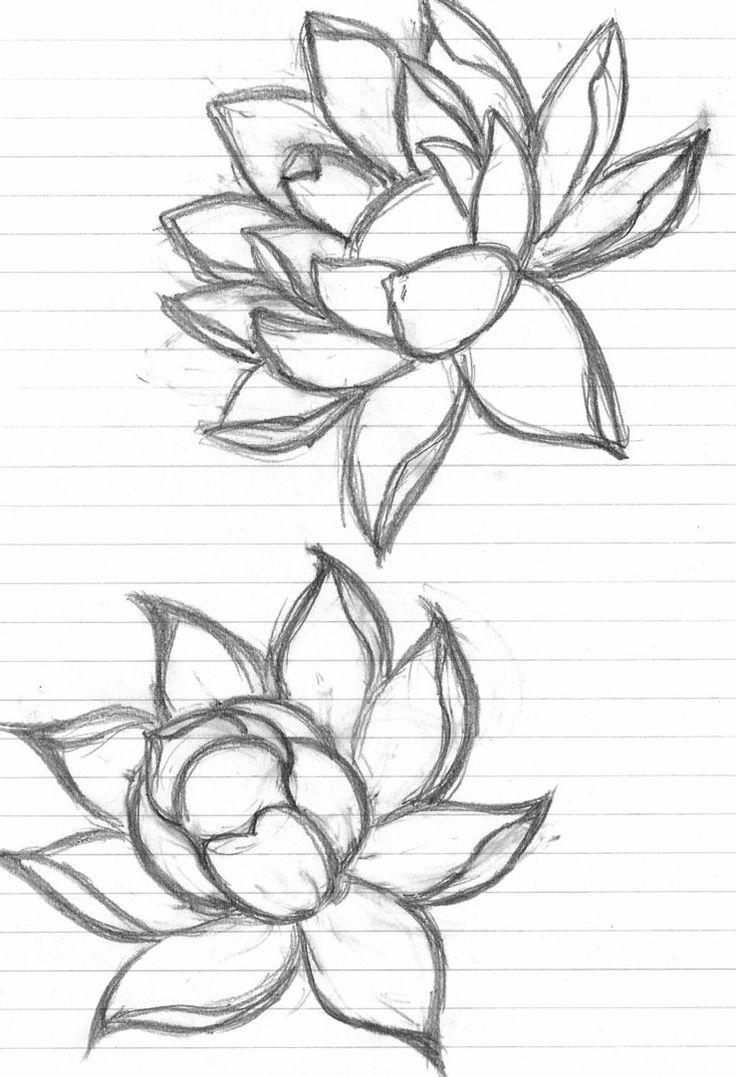 It is a photo of Geeky Lotus Flower Drawing Sketch