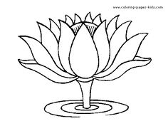 236x177 Lotus Flower Begging For Color Don39t You Think
