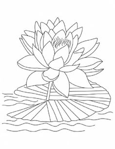 236x304 Lotus Flower Coloring Pages Printable