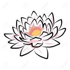 Lotus Flower Drawing Images