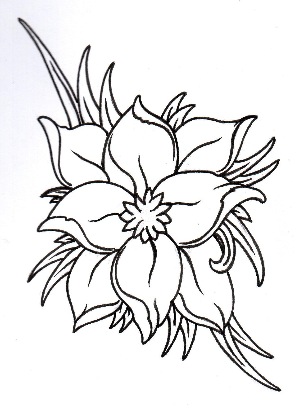 Lotus flower drawing outline at getdrawings free for personal 1245x1712 out lines flowers images best ideas of lotus flower outline izmirmasajfo