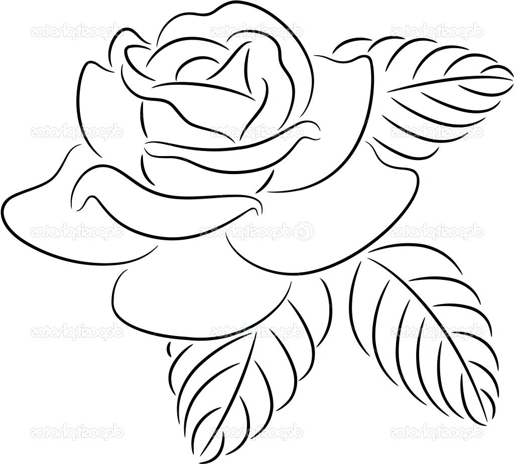 Lotus flower drawing outline at getdrawings free for personal 1024x925 rose flower outline drawing contour stock vector lotus clip art izmirmasajfo