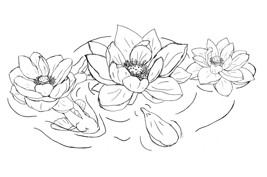 Lotus flower drawing outline at getdrawings free for personal 900x597 black outline lotus flowers tattoo design mightylinksfo