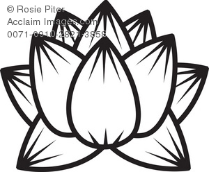 300x248 Outline Of Lotus Flower Clipart Amp Stock Photography Acclaim Images