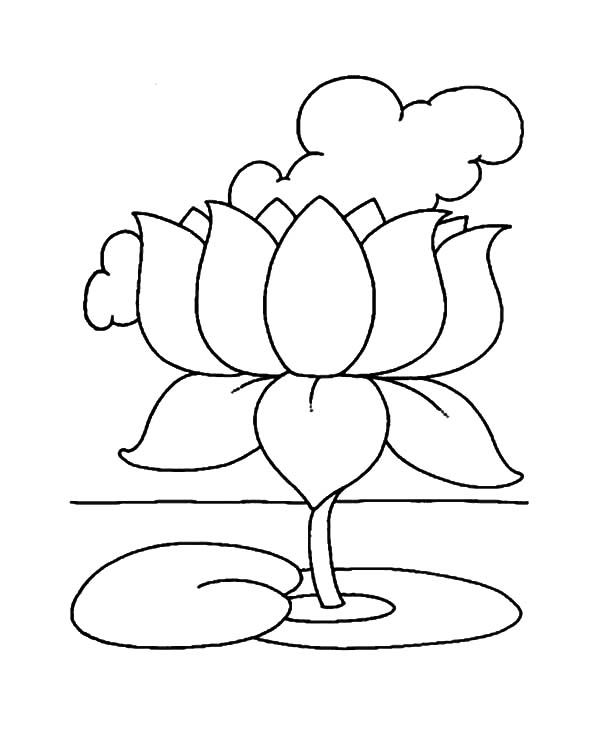 Lotus flower drawing outline at getdrawings free for personal 600x733 buddhism lotus flower coloring pages batch coloring mightylinksfo