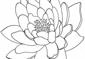 300x210 Japanese Flowers Drawings Easy Japanese Flowers Drawings Archives