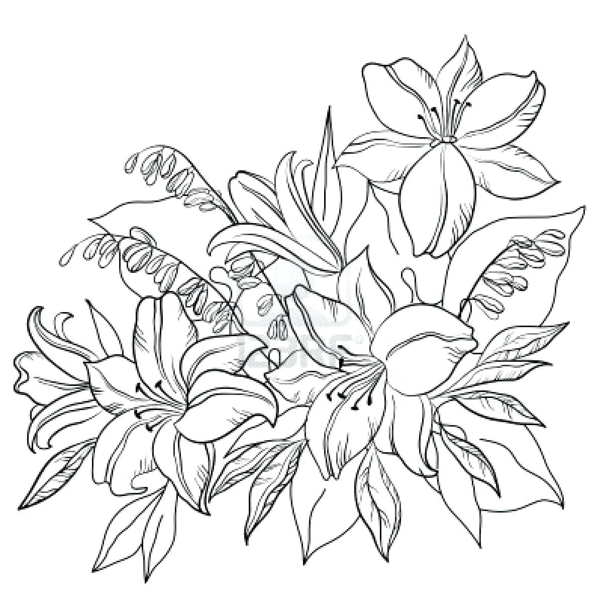 Lotus flower drawing sketch at getdrawings free for personal 1200x1200 rose tattoo outline sketch small lotus flower designs sleeve izmirmasajfo