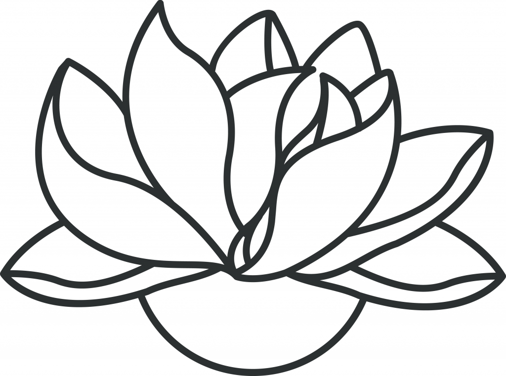 Lotus Flower Drawing Step By Step At Getdrawings Com Free For