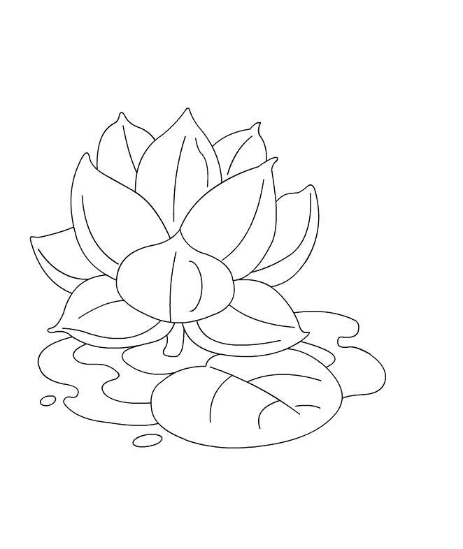 Lotus Flower Drawing Step By Step at GetDrawings.com ...
