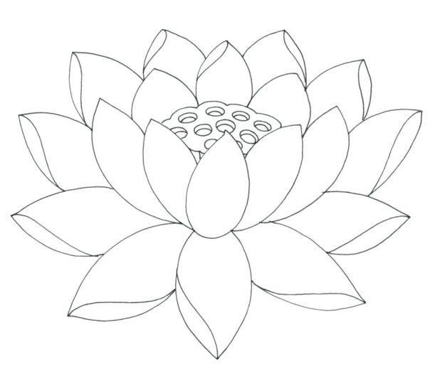 618x540 Coloring Pages Terrific Basic Flower Outline. Coloring Pages