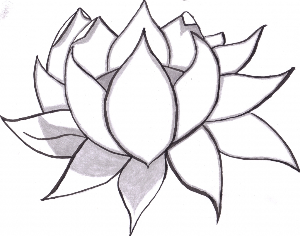 Japanese lotus flower meaning images flower rose pink love lotus flower drawing tattoo at getdrawings free for personal izmirmasajfo