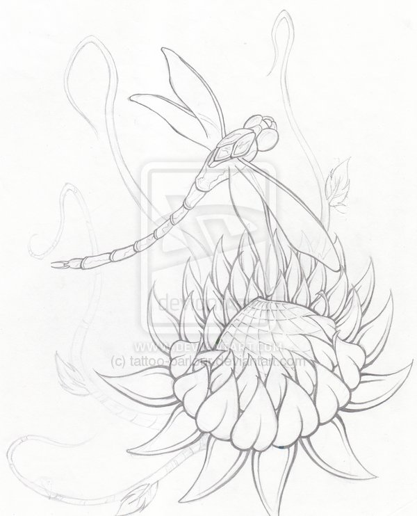 600x742 Collection Of Lotus Dragonfly Tattoo Drawing
